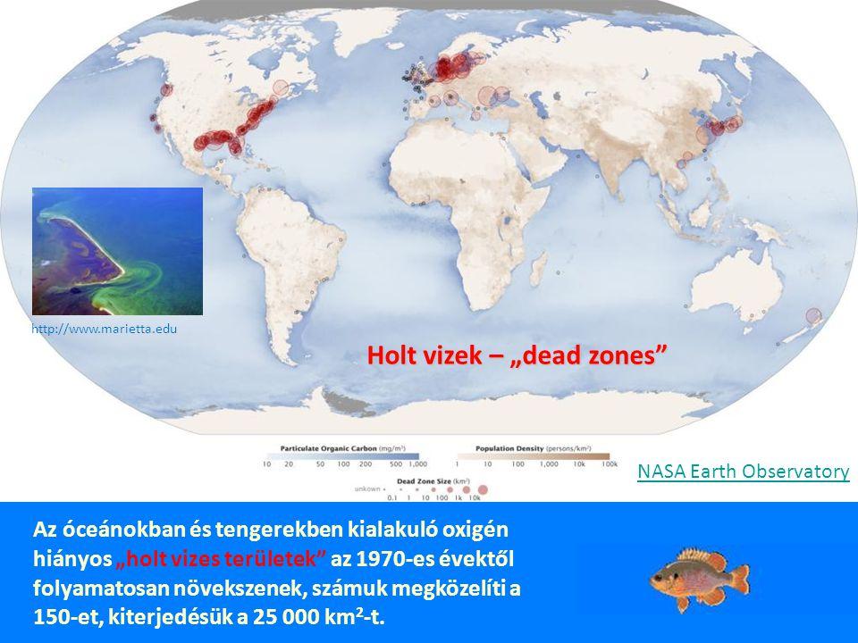 Klorofill-a koncentráció EUTROFIZÁCIÓ: FEKETE-TENGER © danubs.tuwien.ac.at DUNA VÍZGYŰJTŐ 800 ezer km 2, 80 millió lakos, 19 ország http://www.icpdr.org/icpdr-pages/