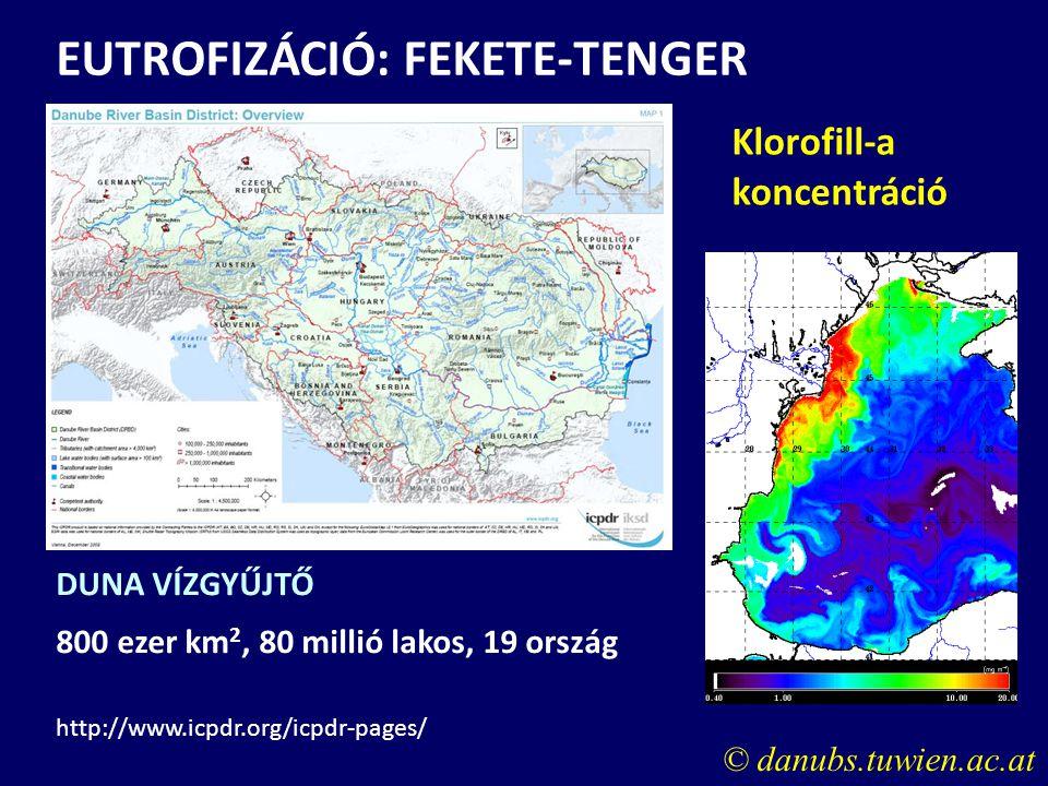 Klorofill-a koncentráció EUTROFIZÁCIÓ: FEKETE-TENGER © danubs.tuwien.ac.at DUNA VÍZGYŰJTŐ 800 ezer km 2, 80 millió lakos, 19 ország http://www.icpdr.o