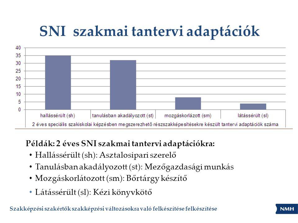 SNI szakmai tantervi adaptációk Szakképzési szakértők szakképzési változásokra való felkészítése felkészítése Példák: 2 éves SNI szakmai tantervi adap