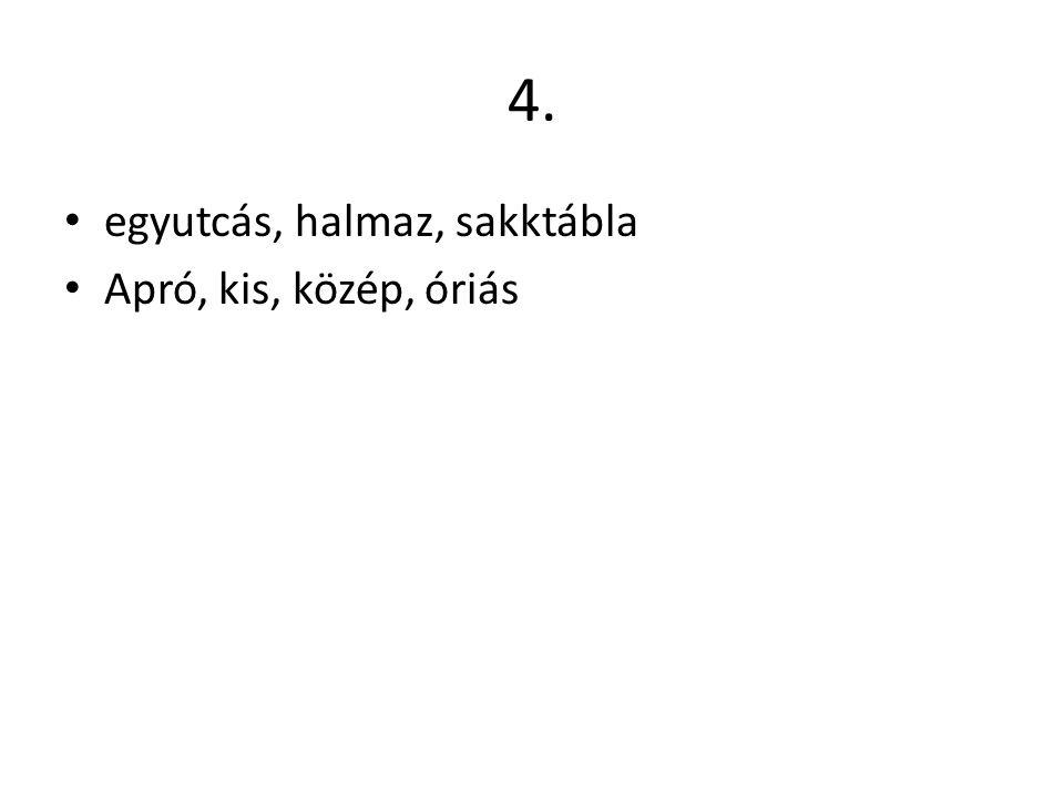 4. • egyutcás, halmaz, sakktábla • Apró, kis, közép, óriás