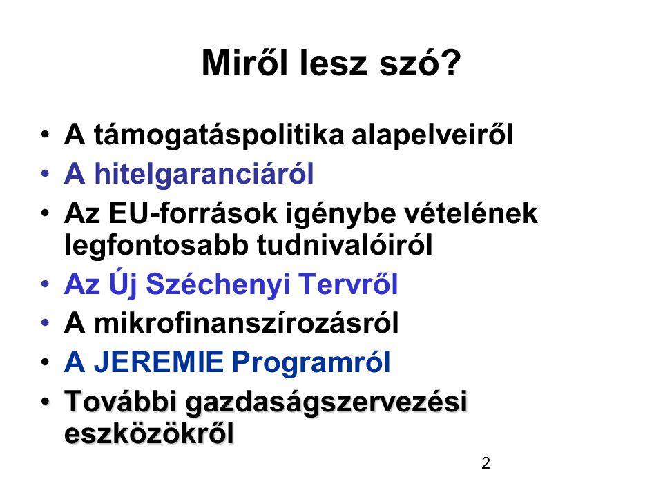 Összefoglalás folytatása • Új Széchenyi Terv • Mikrofinanszírozás + Széchenyi Kártya • JEREMIE Program (kockázati tőke) • További gazdaságszervezési eszközök • Minimálbér kompenzáció • EU-önerő alap • Növekedési hitel (2013.