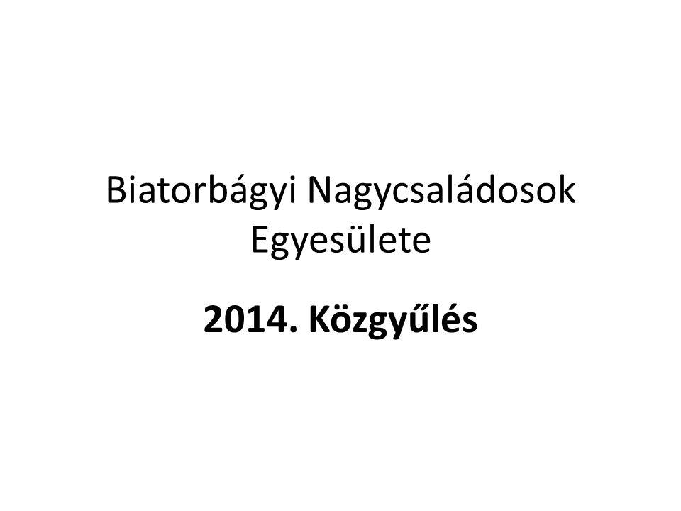 Biatorbágyi Nagycsaládosok Egyesülete 2014. Közgyűlés