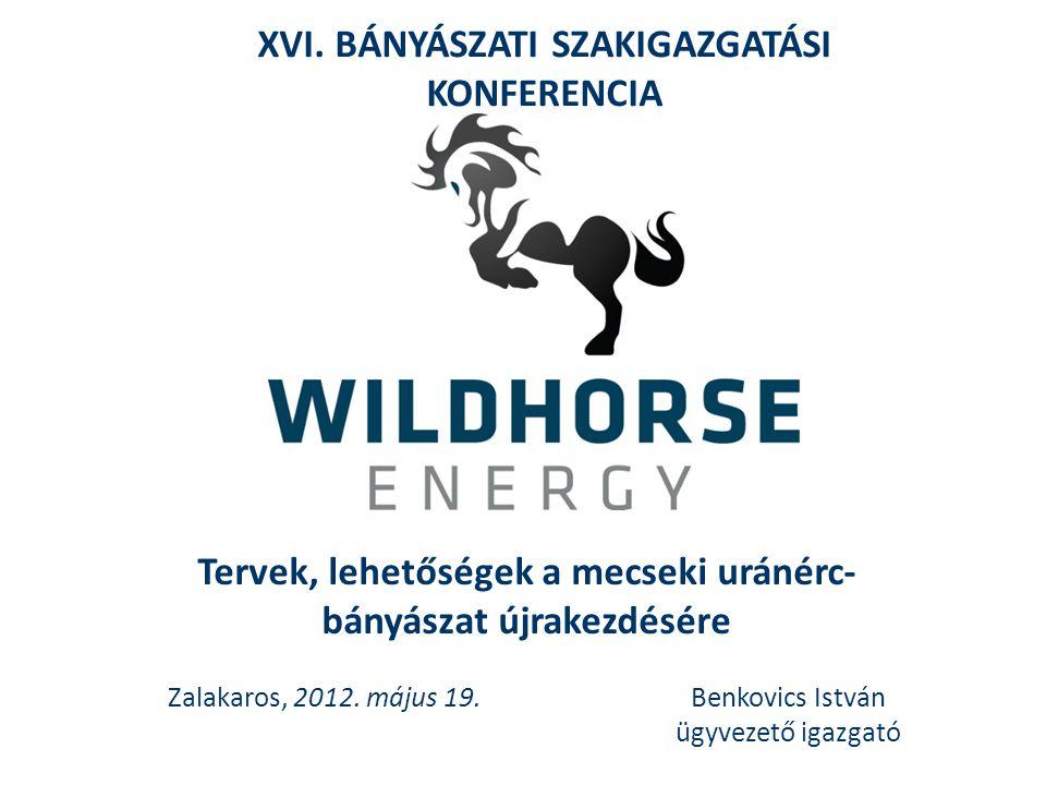 Tervek, lehetőségek a mecseki uránérc- bányászat újrakezdésére Zalakaros, 2012. május 19.Benkovics István ügyvezető igazgató XVI. BÁNYÁSZATI SZAKIGAZG