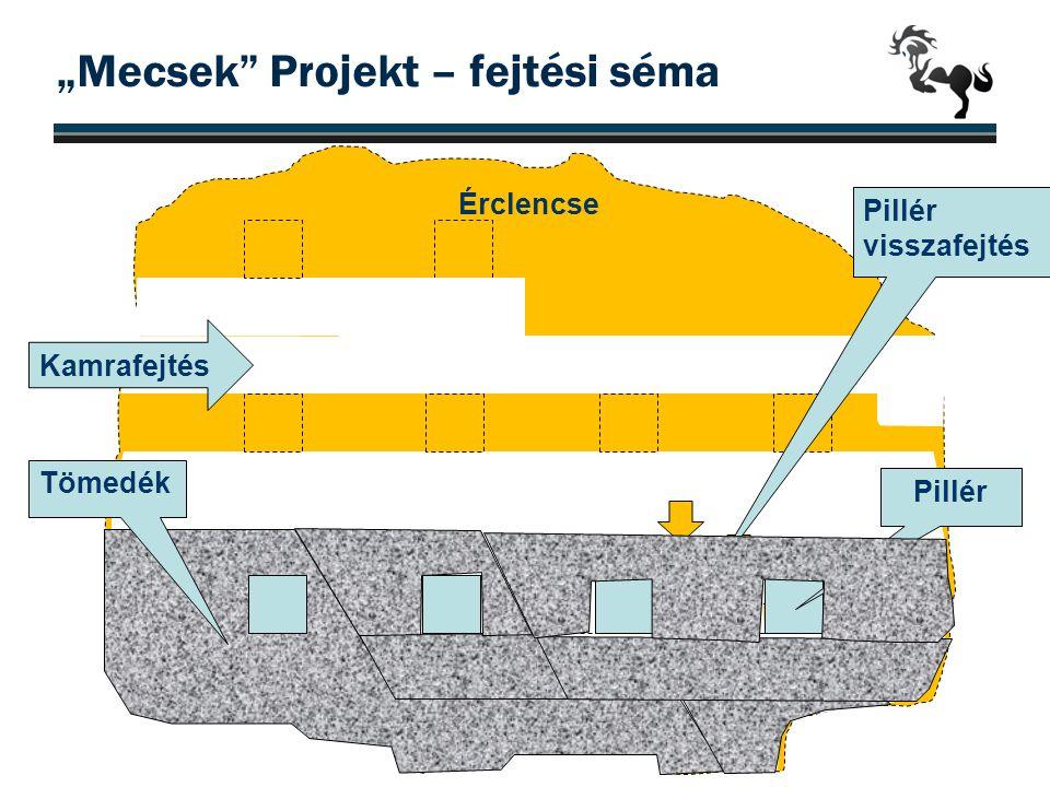 """12m Érclencse """"Mecsek"""" Projekt – fejtési séma 21 Pillér Tömedék Pillér visszafejtés Kamrafejtés"""