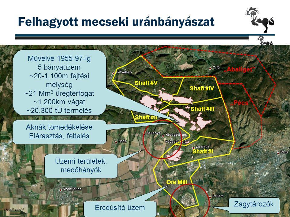 """""""Mecsek Projekt - földtani szelvény 16 Érchordozó összlet (10-100m) Donátusi templom""""25 emeletes ~900 m"""