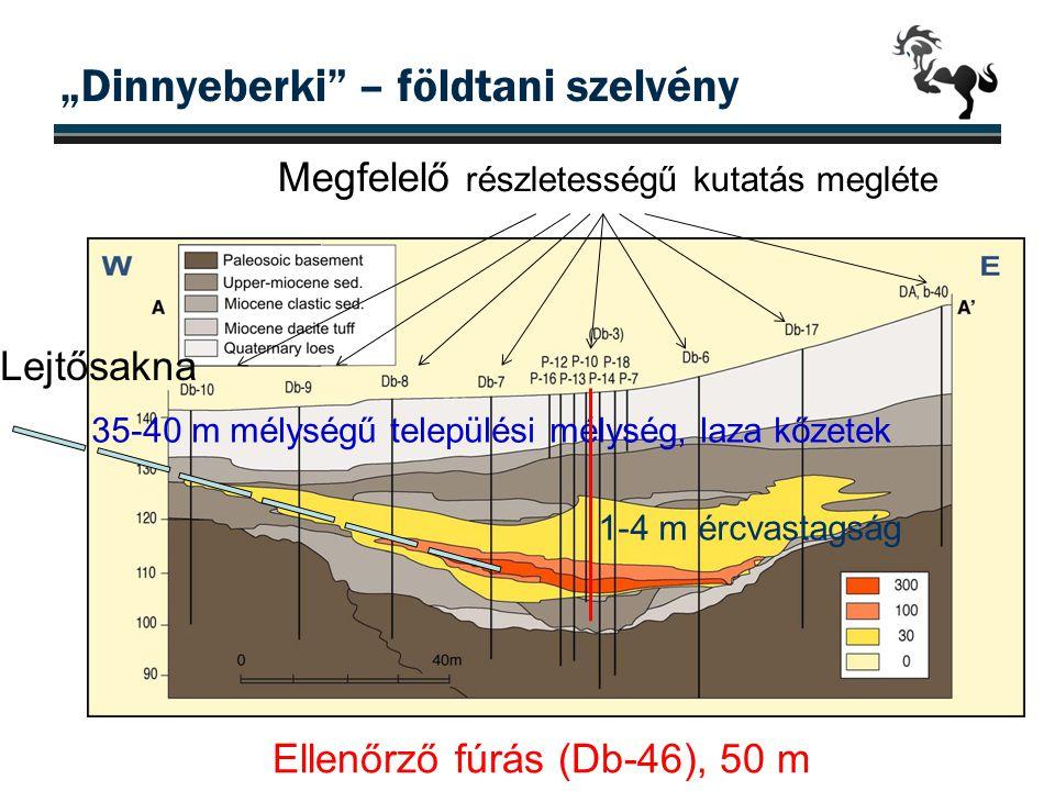 """""""Dinnyeberki"""" – földtani szelvény 35-40 m mélységű települési mélység, laza kőzetek 1-4 m ércvastagság Megfelelő részletességű kutatás megléte Ellenőr"""