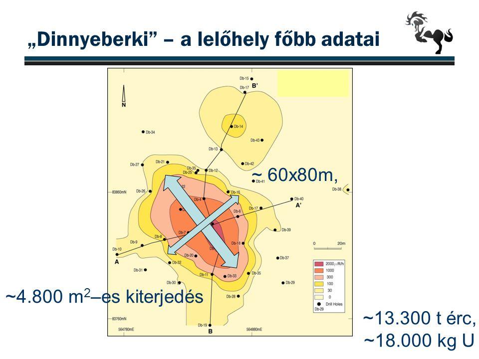 """""""Dinnyeberki"""" – a lelőhely főbb adatai ~ 60x80m, ~13.300 t érc, ~18.000 kg U ~4.800 m 2 –es kiterjedés"""