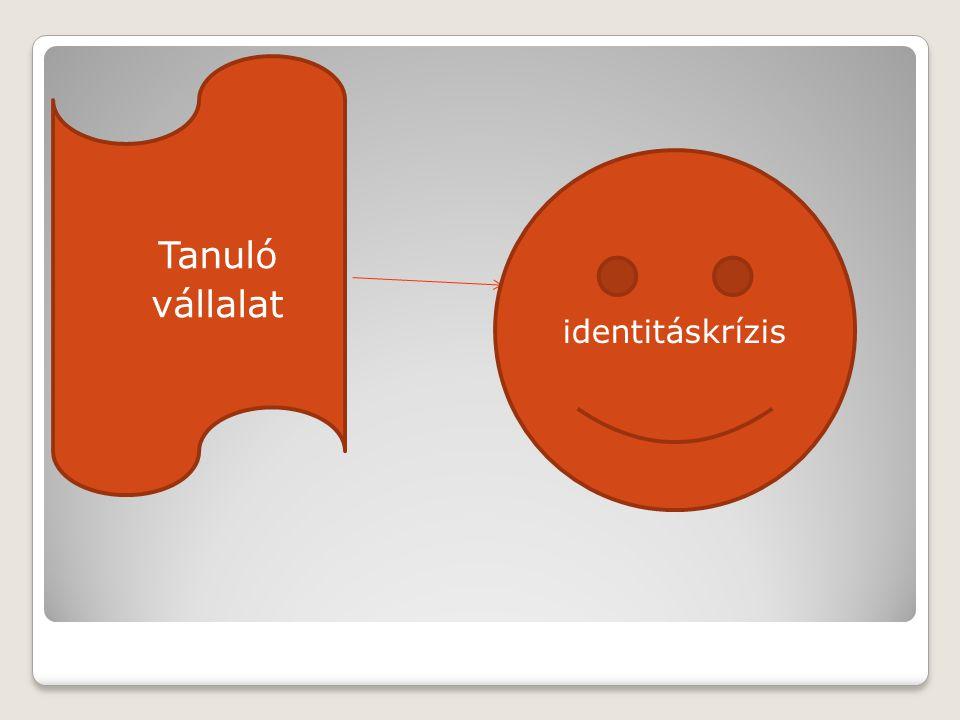  Tanuló  vállalat identitáskrízis