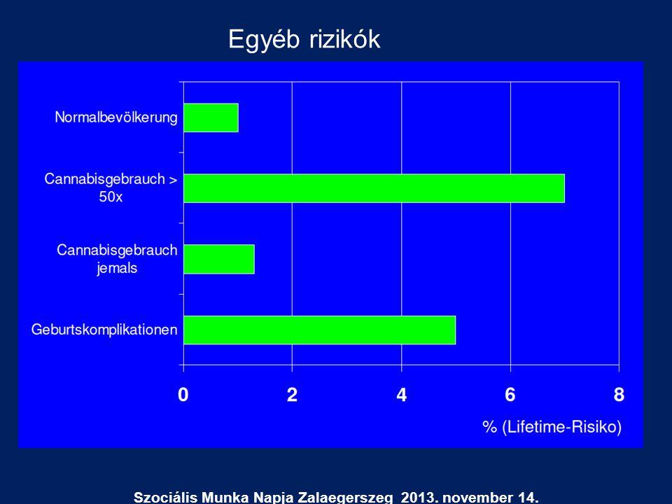 Szociális Munka Napja Zalaegerszeg 2013. november 14. Egyéb rizikók