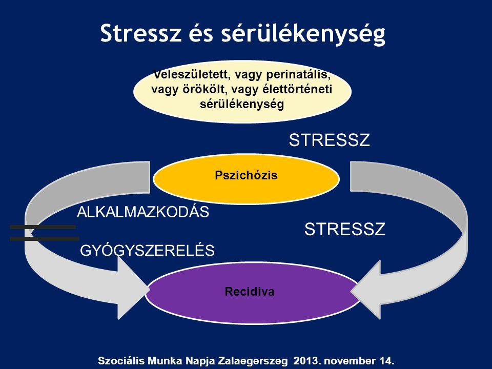Stressz és sérülékenység Szociális Munka Napja Zalaegerszeg 2013. november 14. Veleszületett, vagy perinatális, vagy örökölt, vagy élettörténeti sérül