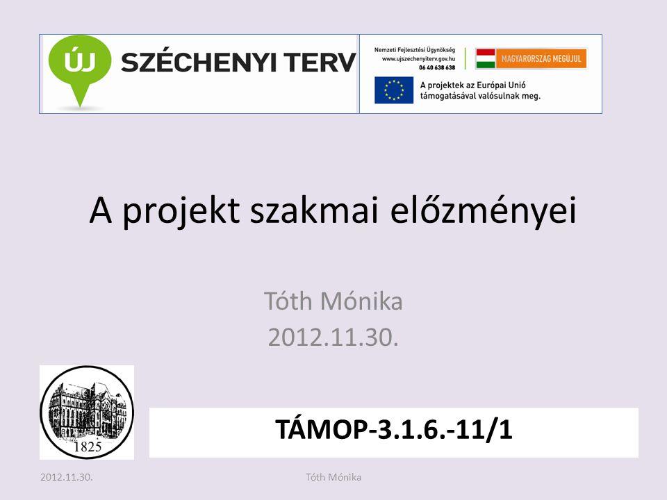 A projekt szakmai előzményei Tóth Mónika 2012.11.30. TÁMOP-3.1.6.-11/1 2012.11.30.Tóth Mónika