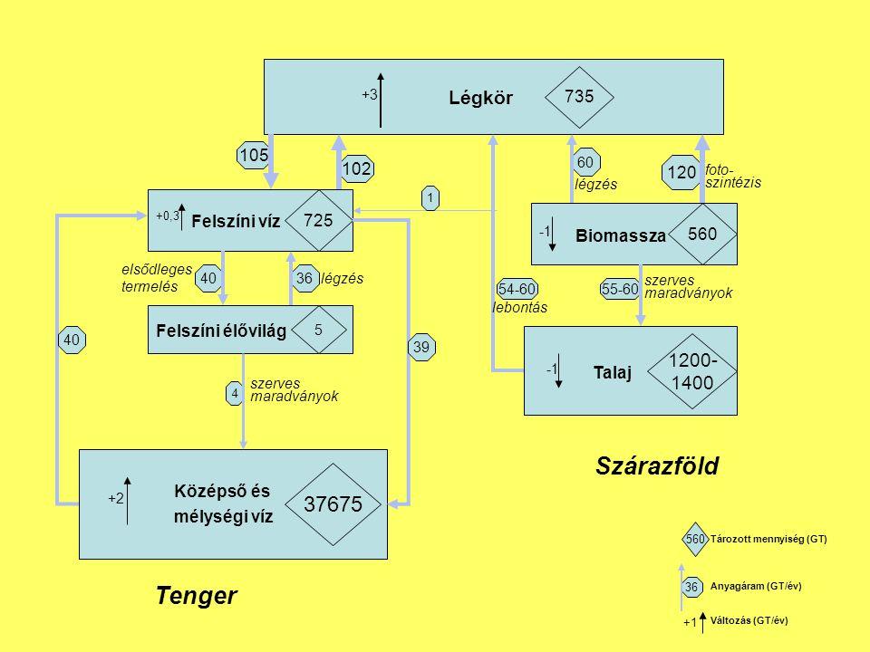 Légkör 735 Felszíni víz 725 Felszíni élővilág 5 Középső és mélységi víz 37675 Biomassza 560 Talaj 1200- 1400 105 102 4036 4 +3 +2 60 120 55-60 +0,3 40 39 54-60 1 Tenger Szárazföld lebontás légzés foto- szintézis szerves maradványok szerves maradványok légzés elsődleges termelés 560 36 +1 Tározott mennyiség (GT) Anyagáram (GT/év) Változás (GT/év)