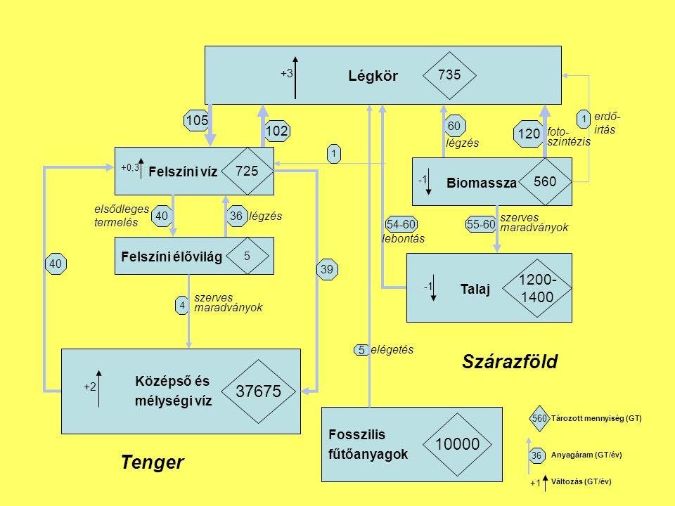 Légkör 735 Felszíni víz 725 Felszíni élővilág 5 Középső és mélységi víz 37675 Biomassza 560 Talaj 1200- 1400 Fosszilis fűtőanyagok 10000 105 102 4036 4 +3 +2 60 120 55-60 5 +0,3 40 39 54-60 1 1 Tenger Szárazföld lebontás erdő- irtás légzés foto- szintézis szerves maradványok szerves maradványok légzés elsődleges termelés elégetés 560 36 +1 Tározott mennyiség (GT) Anyagáram (GT/év) Változás (GT/év)