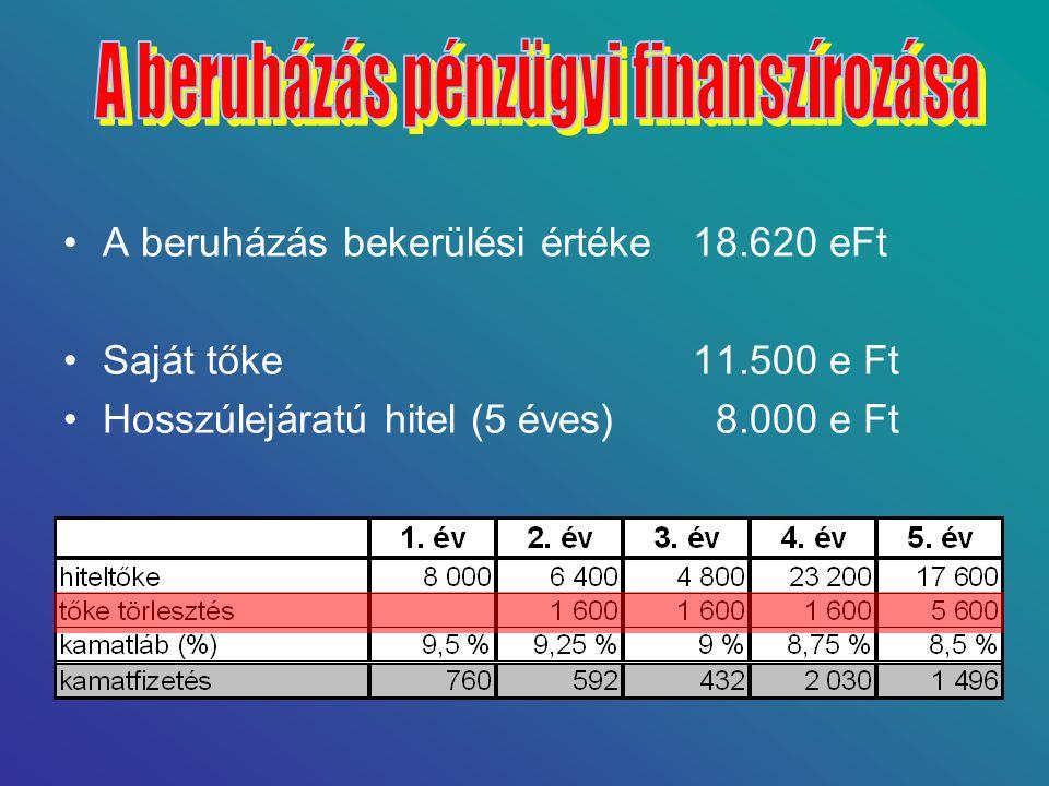•A beruházás bekerülési értéke18.620 eFt •Saját tőke11.500 e Ft •Hosszúlejáratú hitel (5 éves) 8.000 e Ft