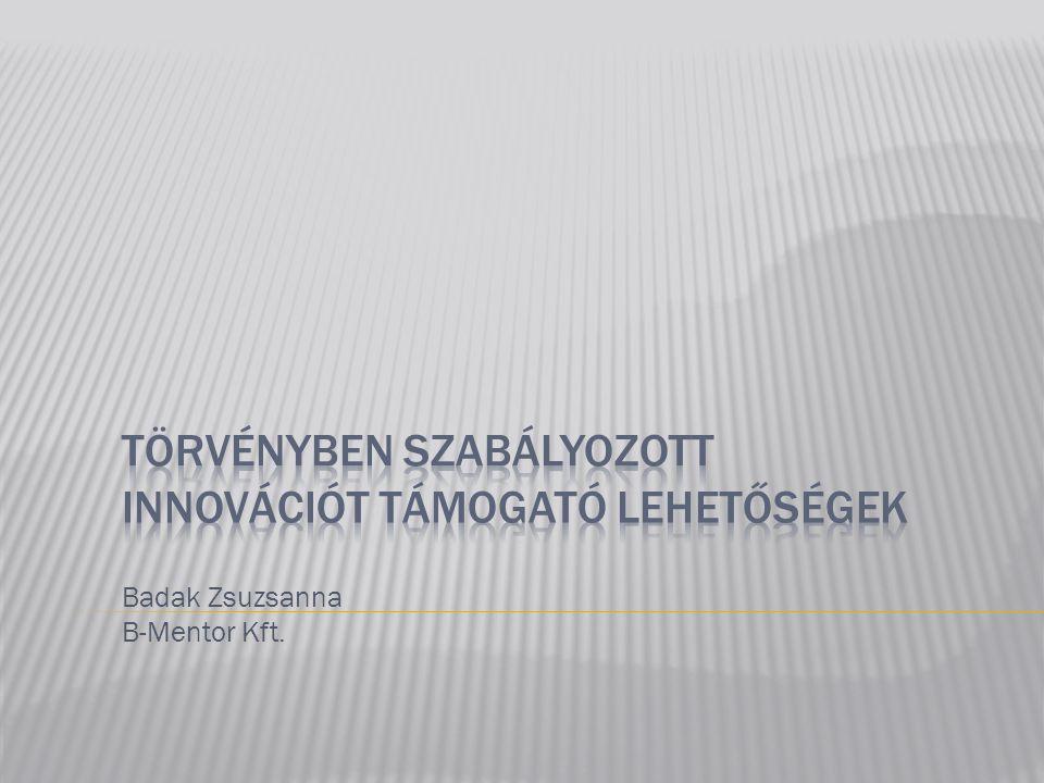 Badak Zsuzsanna B-Mentor Kft.