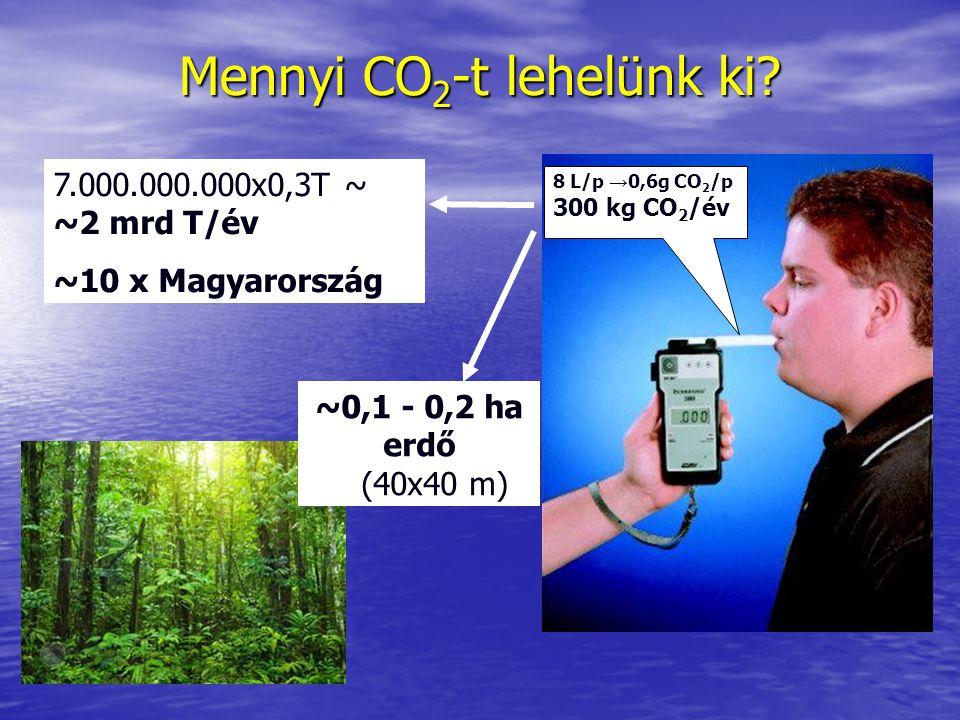 Mennyi CO 2 -t lehelünk ki? 8 L/p → 0,6g CO 2 /p 300 kg CO 2 /év 7.000.000.000x0,3T ~ ~2 mrd T/év ~10 x Magyarország ~0,1 - 0,2 ha erdő (40x40 m)