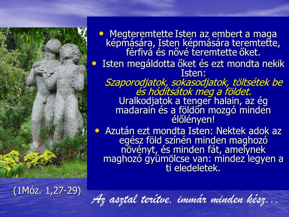 Jézus idején 2-300 Millió Reformáció 5-600 Millió Population Clocks World 7,001,060,377 2011.