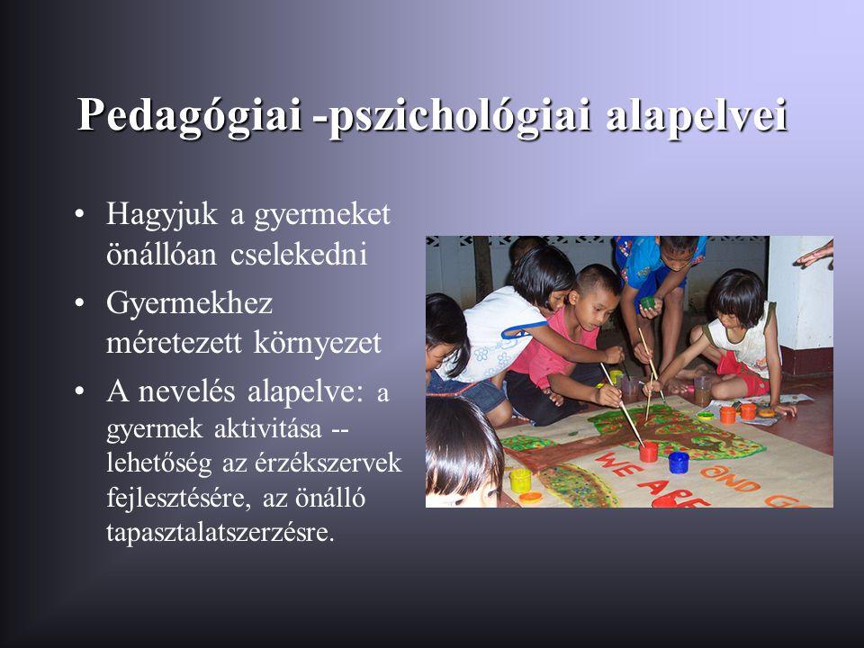Pedagógiai -pszichológiai alapelvei •Hagyjuk a gyermeket önállóan cselekedni •Gyermekhez méretezett környezet •A nevelés alapelve: a gyermek aktivitás