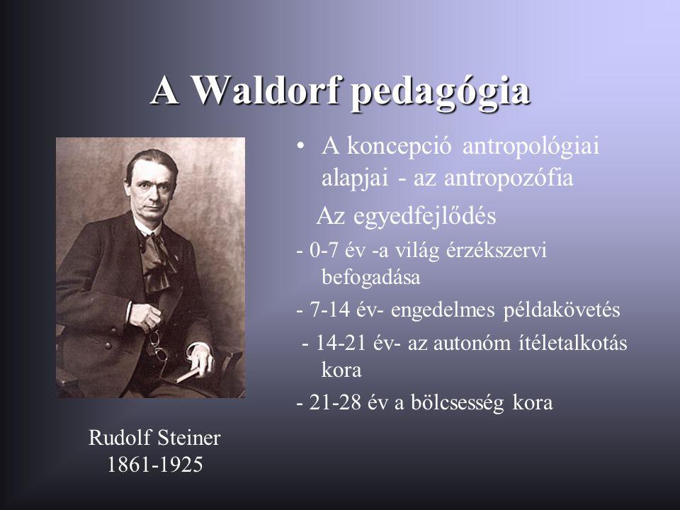 A Waldorf pedagógia •A koncepció antropológiai alapjai - az antropozófia Az egyedfejlődés - 0-7 év -a világ érzékszervi befogadása - 7-14 év- engedelm