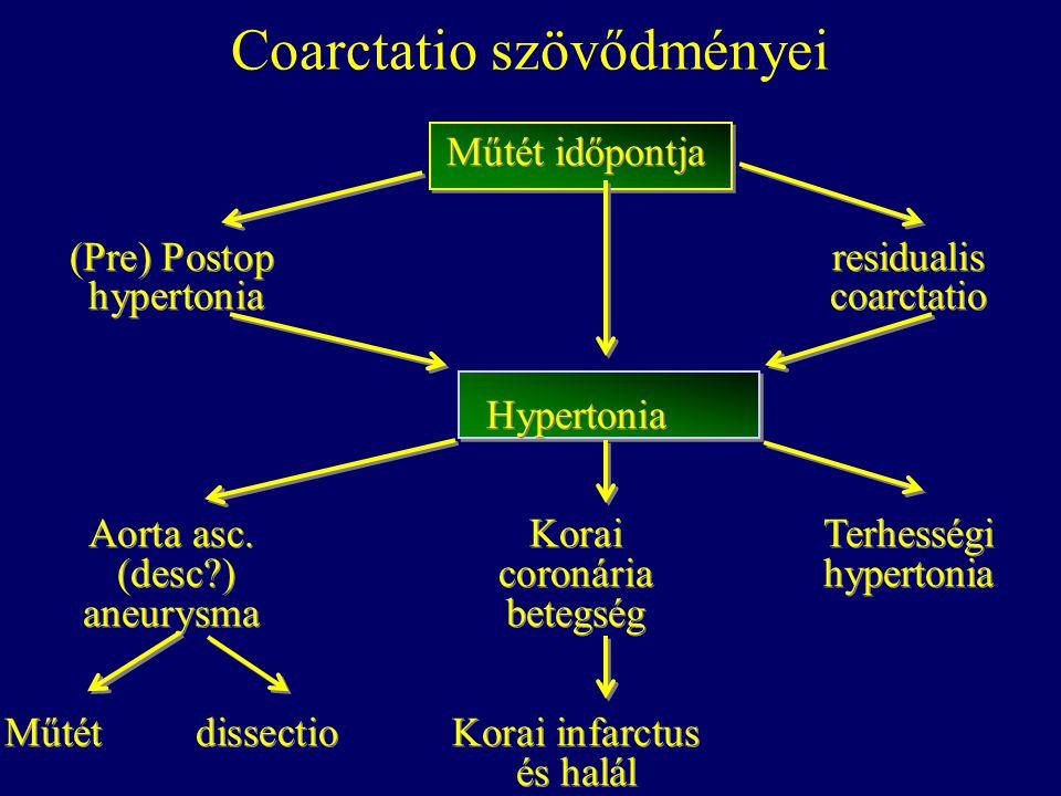 Műtét időpontja (Pre) Postop residualis hypertoniacoarctatio Hypertonia Aorta asc. Korai Terhességi (desc?) coronáriahypertonia aneurysmabetegség Műté