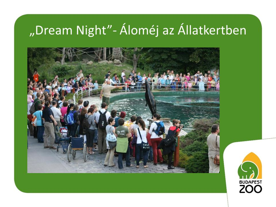 """""""Dream Night - Áloméj az Állatkertben"""