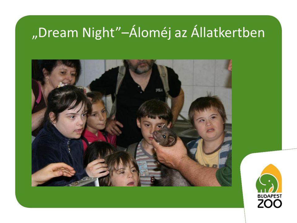 """""""Dream Night –Áloméj az Állatkertben"""