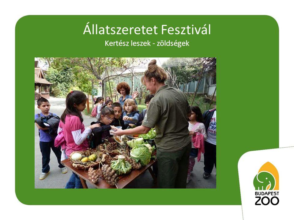 Állatszeretet Fesztivál Kertész leszek - zöldségek