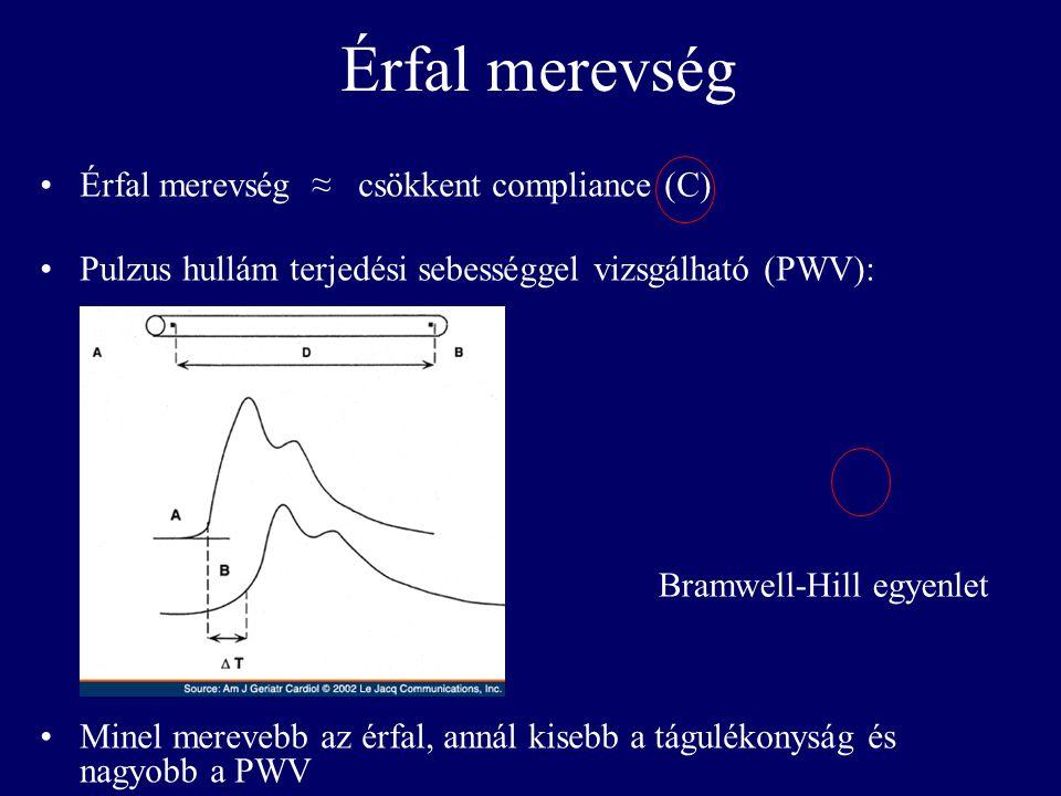 Érfal merevség •Érfal merevség ≈ csökkent compliance (C) •Pulzus hullám terjedési sebességgel vizsgálható (PWV): •Minel merevebb az érfal, annál kiseb