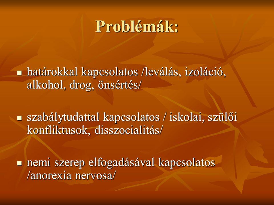 Problémák:  határokkal kapcsolatos /leválás, izoláció, alkohol, drog, önsértés/  szabálytudattal kapcsolatos / iskolai, szülői konfliktusok, disszocialitás/  nemi szerep elfogadásával kapcsolatos /anorexia nervosa/