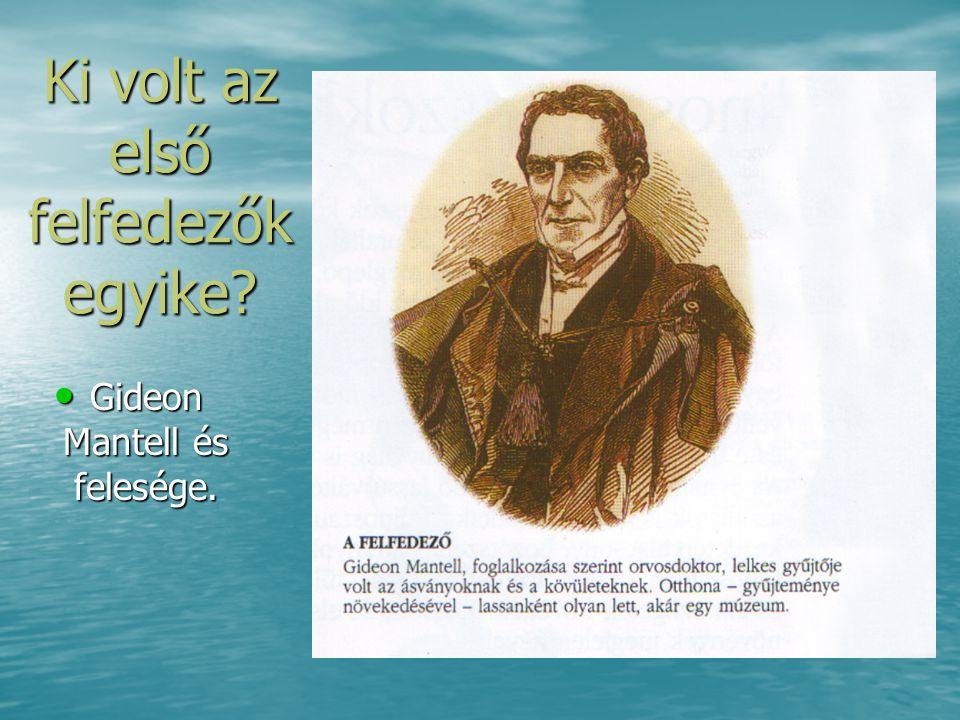 Ki volt az első felfedezők egyike? • Gideon Mantell és felesége.