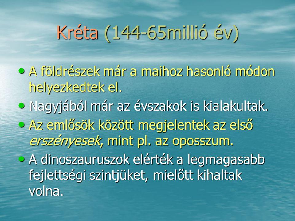 Kréta (144-65millió év) •A•A•A•A földrészek már a maihoz hasonló módon helyezkedtek el. •N•N•N•Nagyjából már az évszakok is kialakultak. •A•A•A•Az eml