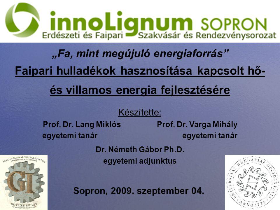 1 Faipari hulladékok hasznosítása kapcsolt hő- és villamos energia fejlesztésére Készítette: Prof. Dr. Lang Miklós Prof. Dr. Varga Mihály egyetemi tan