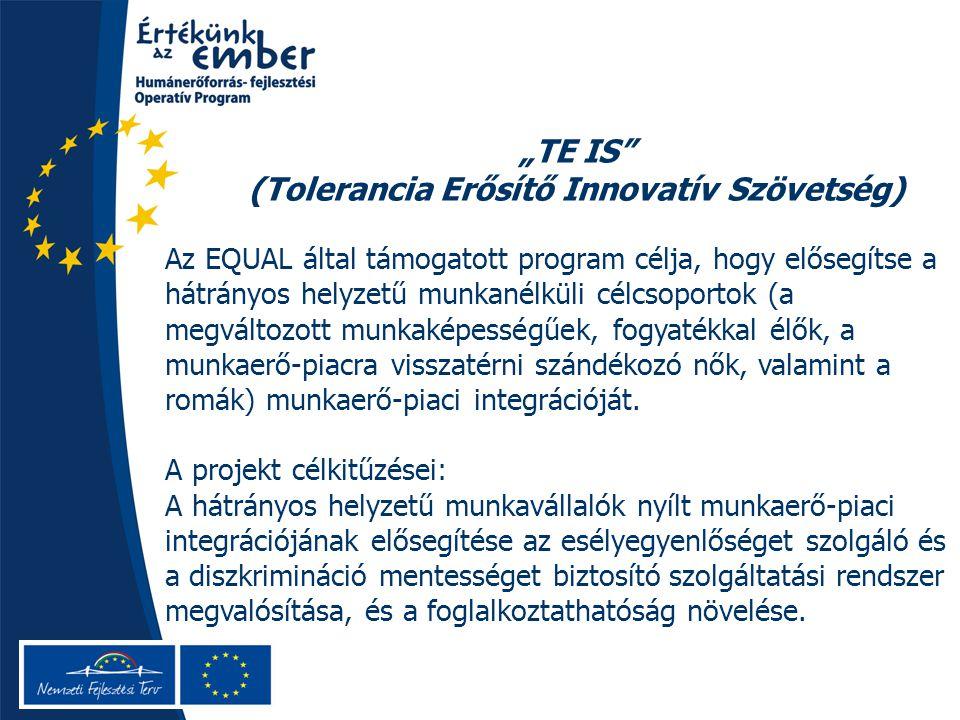 """""""TE IS (Tolerancia Erősítő Innovatív Szövetség) Az EQUAL által támogatott program célja, hogy elősegítse a hátrányos helyzetű munkanélküli célcsoportok (a megváltozott munkaképességűek, fogyatékkal élők, a munkaerő-piacra visszatérni szándékozó nők, valamint a romák) munkaerő-piaci integrációját."""