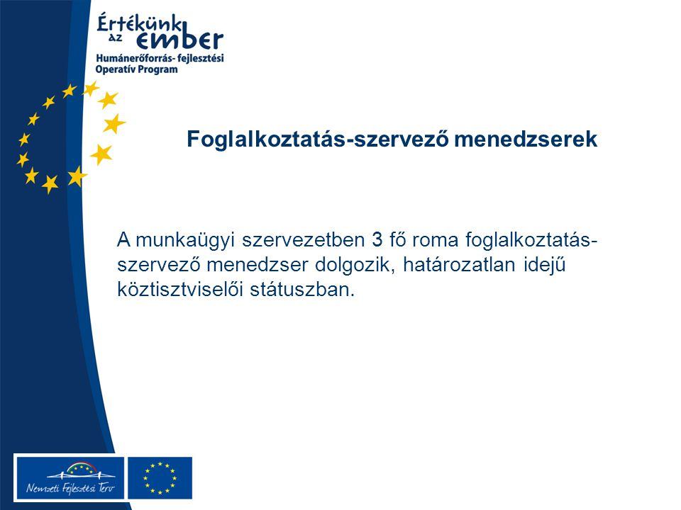 Foglalkoztatás-szervező menedzserek A munkaügyi szervezetben 3 fő roma foglalkoztatás- szervező menedzser dolgozik, határozatlan idejű köztisztviselői státuszban.