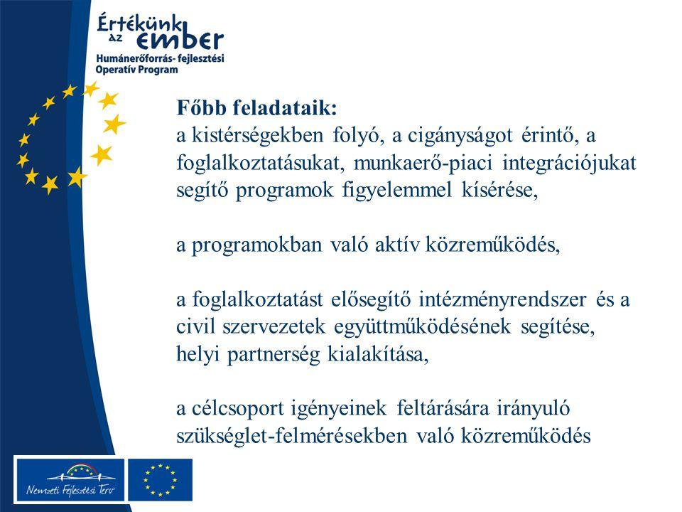 Főbb feladataik: a kistérségekben folyó, a cigányságot érintő, a foglalkoztatásukat, munkaerő-piaci integrációjukat segítő programok figyelemmel kísérése, a programokban való aktív közreműködés, a foglalkoztatást elősegítő intézményrendszer és a civil szervezetek együttműködésének segítése, helyi partnerség kialakítása, a célcsoport igényeinek feltárására irányuló szükséglet-felmérésekben való közreműködés