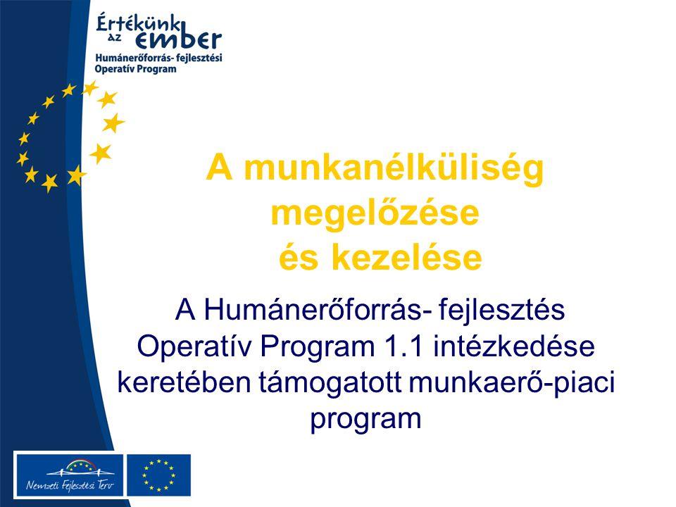 A munkanélküliség megelőzése és kezelése A Humánerőforrás- fejlesztés Operatív Program 1.1 intézkedése keretében támogatott munkaerő-piaci program