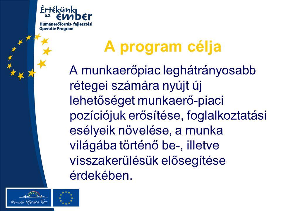 A program célja A munkaerőpiac leghátrányosabb rétegei számára nyújt új lehetőséget munkaerő-piaci pozíciójuk erősítése, foglalkoztatási esélyeik növelése, a munka világába történő be-, illetve visszakerülésük elősegítése érdekében.