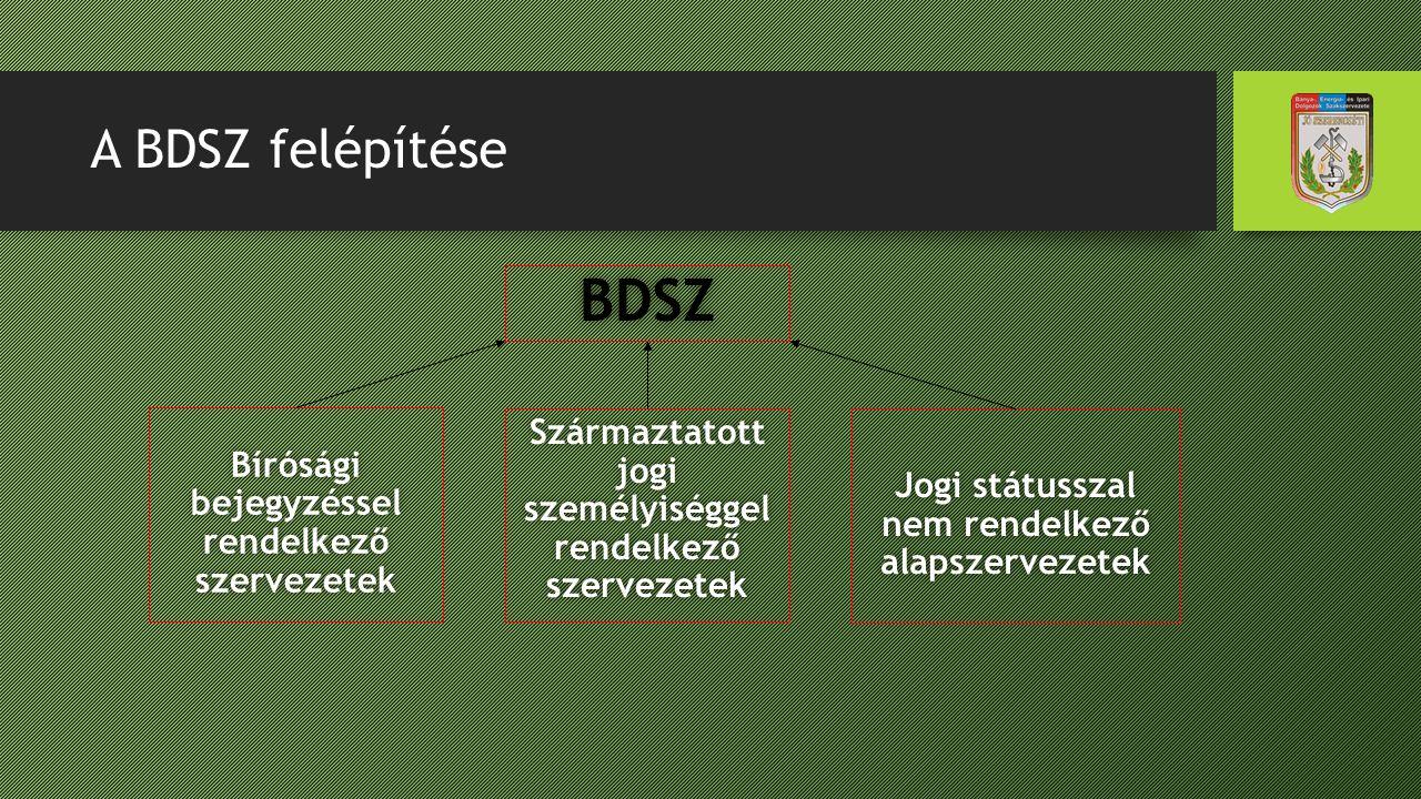 A BDSZ felépítése BDSZ Bírósági bejegyzéssel rendelkező szervezetek Származtatott jogi személyiséggel rendelkező szervezetek Jogi státusszal nem rende