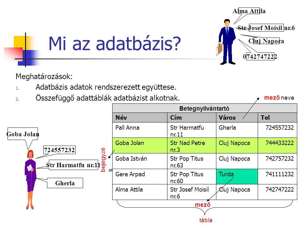 Mi az adatbázis? Meghatározások: 1. Adatbázis adatok rendszerezett együttese. 2. Összefüggő adattáblák adatbázist alkotnak. Str Josef Moisil nr.6 Alma