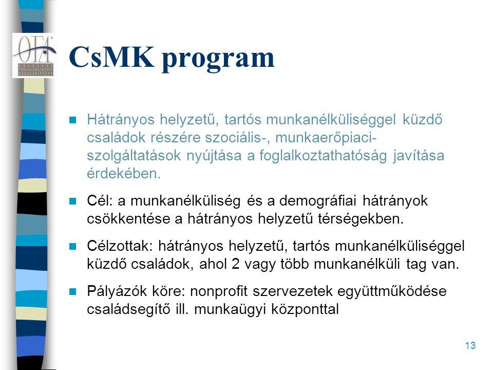 13 CsMK program  Hátrányos helyzetű, tartós munkanélküliséggel küzdő családok részére szociális-, munkaerőpiaci- szolgáltatások nyújtása a foglalkozt