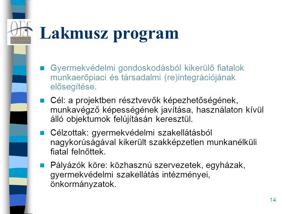 14 Lakmusz program  Gyermekvédelmi gondoskodásból kikerülő fiatalok munkaerőpiaci és társadalmi (re)integrációjának elősegítése.  Cél: a projektben