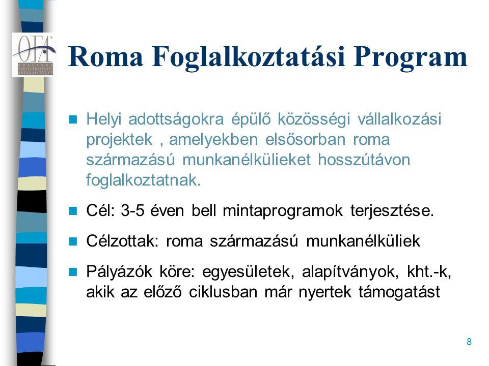 8 Roma Foglalkoztatási Program  Helyi adottságokra épülő közösségi vállalkozási projektek, amelyekben elsősorban roma származású munkanélkülieket hosszútávon foglalkoztatnak.