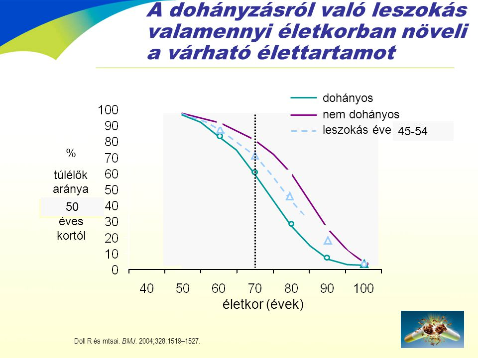 A dohányzásról való leszokás valamennyi életkorban növeli a várható élettartamot 60 45-54 50 életkor (évek) leszokás éve nem dohányos dohányos Doll R