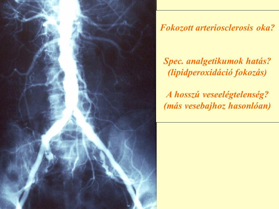 Fokozott arteriosclerosis oka? Spec. analgetikumok hatás? (lipidperoxidáció fokozás) A hosszú veseelégtelenség? (más vesebajhoz hasonlóan)
