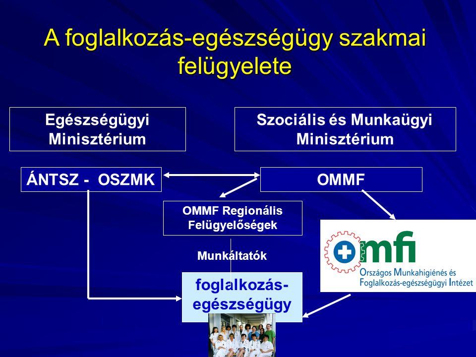 A foglalkozás-egészségügy szakmai felügyelete Egészségügyi Minisztérium Szociális és Munkaügyi Minisztérium ÁNTSZ - OSZMKOMMF foglalkozás- egészségügy