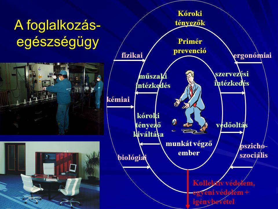A foglalkozás- egészségügy munkát végző ember Primér prevenció műszaki intézkedés kóroki tényező kiváltása védőoltás szervezési intézkedés Kóroki tény