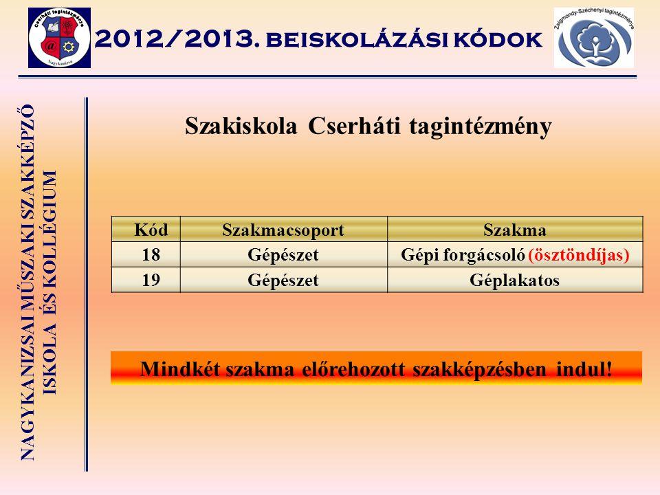 NAGYKANIZSAI MŰSZAKI SZAKKÉPZŐ ISKOLA ÉS KOLLÉGIUM 2012/2013. beiskolázási kódok Szakiskola Cserháti tagintézmény KódSzakmacsoportSzakma 18GépészetGép