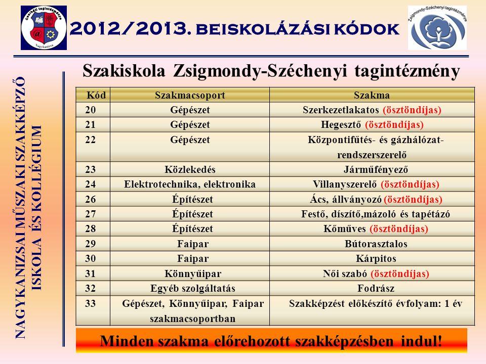 NAGYKANIZSAI MŰSZAKI SZAKKÉPZŐ ISKOLA ÉS KOLLÉGIUM Szakiskola Zsigmondy-Széchenyi tagintézmény 2012/2013. beiskolázási kódok KódSzakmacsoportSzakma 20