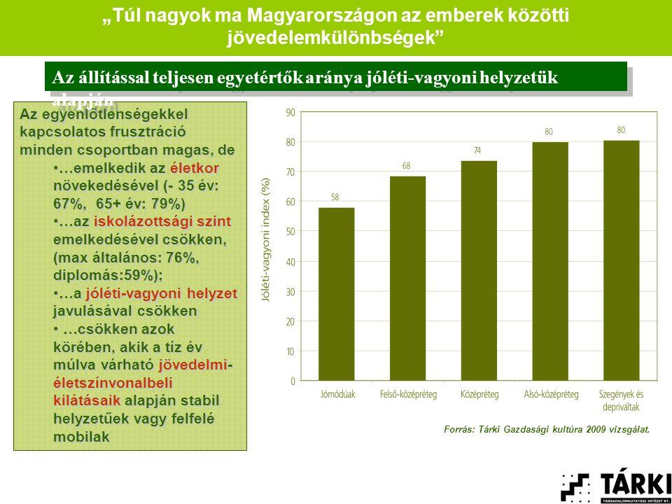 """""""Túl nagyok ma Magyarországon az emberek közötti jövedelemkülönbségek Az egyenlőtlenségekkel kapcsolatos frusztráció minden csoportban magas, de •…emelkedik az életkor növekedésével (- 35 év: 67%, 65+ év: 79%) •…az iskolázottsági szint emelkedésével csökken, (max általános: 76%, diplomás:59%); •…a jóléti-vagyoni helyzet javulásával csökken • …csökken azok körében, akik a tíz év múlva várható jövedelmi- életszínvonalbeli kilátásaik alapján stabil helyzetűek vagy felfelé mobilak Az állítással teljesen egyetértők aránya jóléti-vagyoni helyzetük alapján Forrás: Tárki Gazdasági kultúra 2009 vizsgálat."""