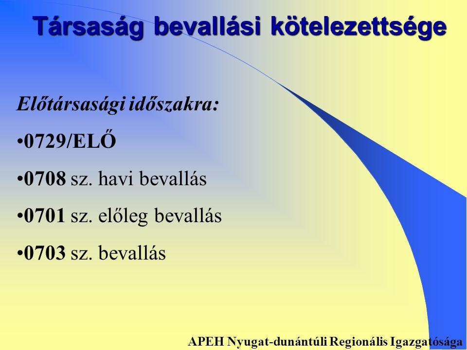 Társaság bevallási kötelezettsége 0729 sz. és 07A29 sz.